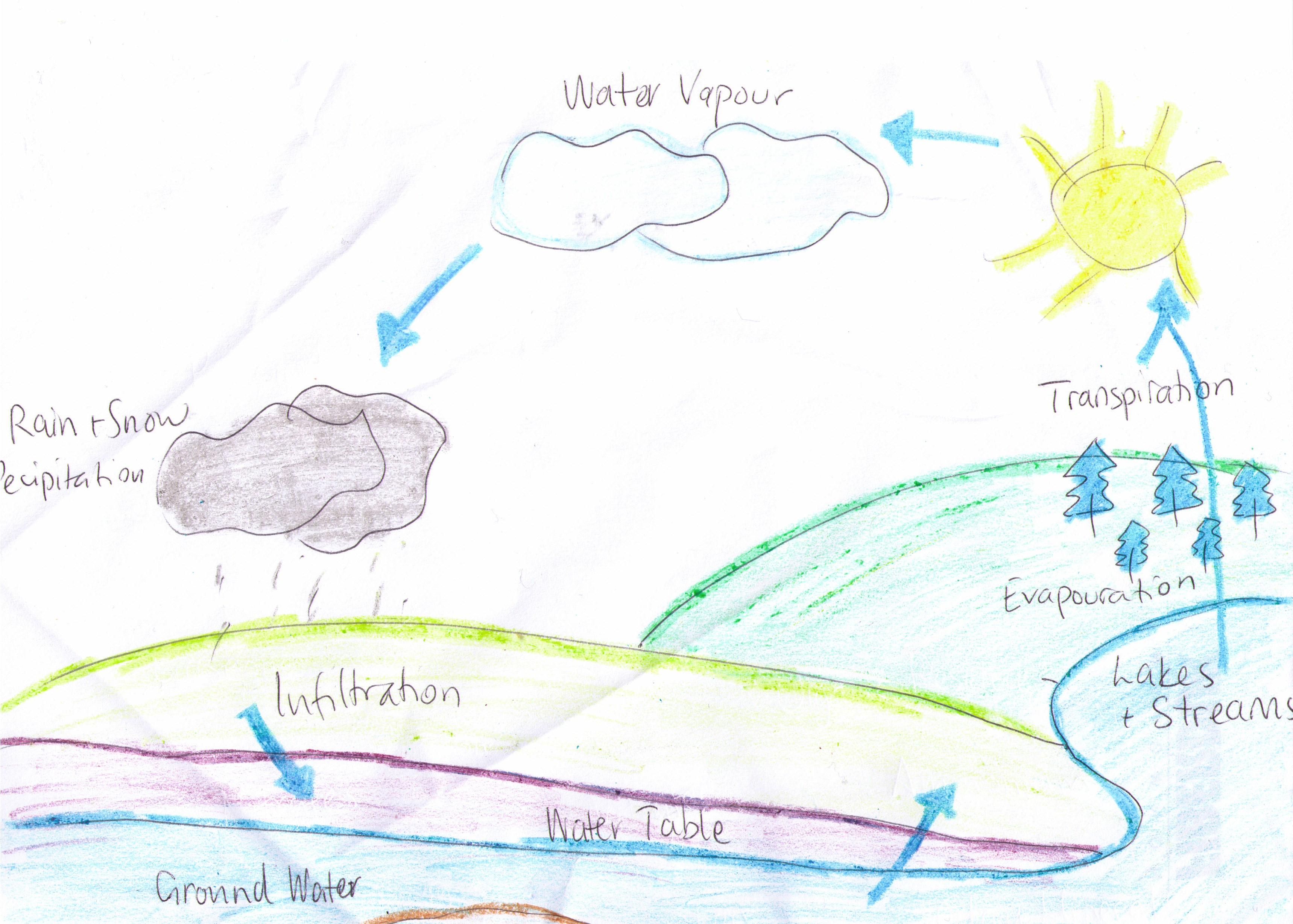 Hydrologic cycle pictures posters news and videos on your hydrologic cycle picture hydrological cycle jpg ccuart Image collections